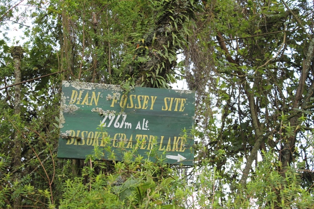dian fossey tomb trail