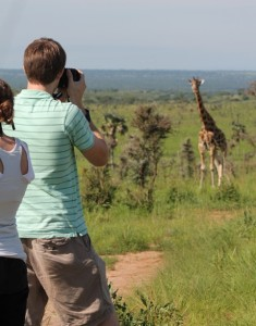 animal viewing in Murchison Falls National Park