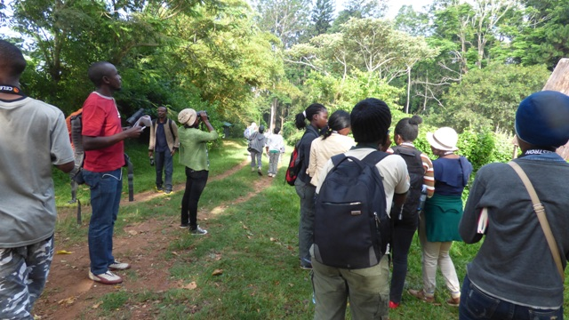 birding at mpanga forest