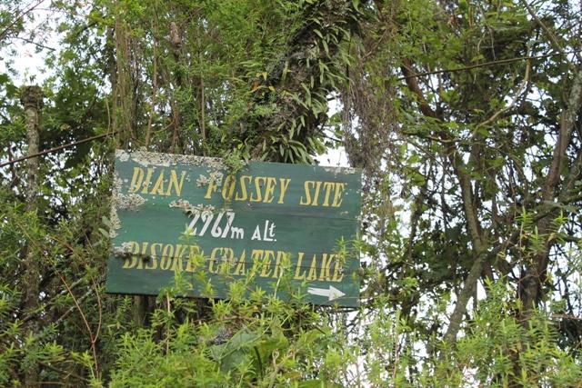 dian fossey tomb trail