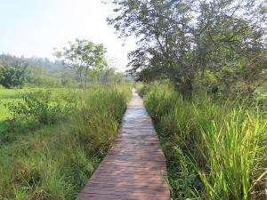 umusambi village nature reserve